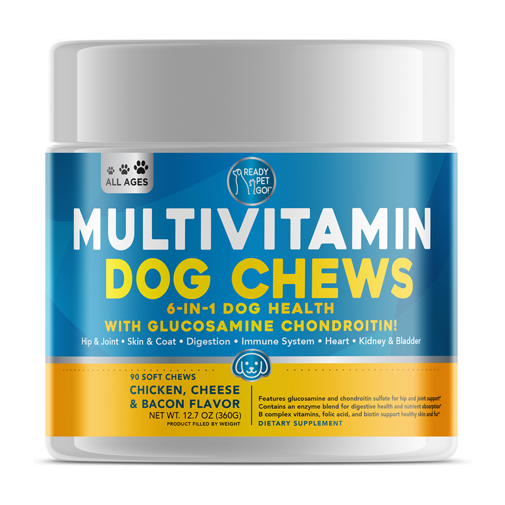 Ready Pet Go! Multivitamins Dog Chews X0027Z94S1